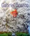 Gabriel Orozco - Ann Temkin