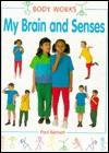 My Brain and Senses - Paul Bennett