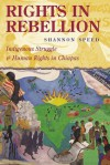 Rights in Rebellion: Indigenous Struggle and Human Rights in Chiapas - Shannon Speed