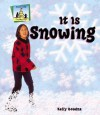 It Is Snowing - Kelly Doudna