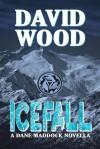 Icefall - David Wood