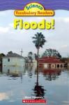 Floods! - Alyse Sweeney