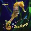 Fry to Sea Horse: by Camilla de la Bedoyere - Camilla De la Bédoyère