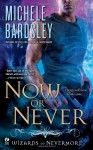 Now or Never - Michele Bardsley
