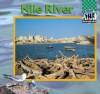 Nile River - Cari Meister