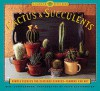 Cactus and Succulents: Simple Secrets for Glorious Gardens -- Indoors and Out - Mimi Luebbermann, Faith Echtermeyer