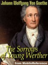 The Sorrows of Young Werther - Johann Wolfgang von Goethe, R. Dillon Boylan