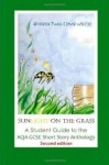 Sunlight on the Grass: A Student Guide to the Aqa Gcse Short Story Anthology - Natalie Twigg, David Wheeler