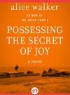Possessing the Secret of Joy (The Color Purple Collection) - Alice Walker