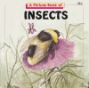 A Picture Book of Insects - Joanne Mattern, Janice Kinnealy