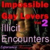 Impossible Gay Lovers, Vol. 2 - Illicit Encounters: Directed Erotic Visualisation - Essemoh Teepee