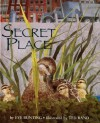 Secret Place - Eve Bunting, Ted Rand