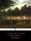 Selected Poetry - Johann Wolfgang von Goethe, David Luke