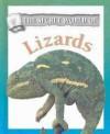 The Secret World of Lizards - Anna Claybourne