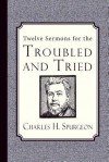Twelve Sermons for the Troubled and Tried - Peter Robinson, James Langton
