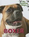 Boxer - Jinny Johnson