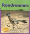 Roadrunners (My Big Backyard) - Lola M. Schaefer, John Cancalosi