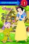 Friends for a Princess (Disney Princess) - Melissa Lagonegro