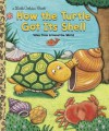 How the Turtle Got Its Shell - Justine Korman Fontes, Ron Fontes, Keiko Motoyama