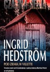 Pod ziemią w Villette - Ingrid Hedström
