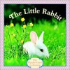 The Little Rabbit (Pictureback®) - Judy Dunn