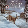 North Country Night - Daniel San Souci