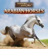 Arabian Horses - Barbara M. Linde