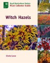 Witch Hazels - Christopher Lane