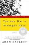 You Are Not a Stranger Here - Adam Haslett
