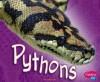 Pythons - Jody Sullivan Rake, Gail Saunders-Smith, George Wittemyer
