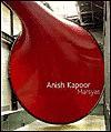 Anish Kapoor: Marsyas - Donna De Salvo, Cecil Balmond