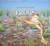 A Place for Frogs - Melissa Stewart, Higgins Bond