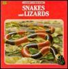 Snakes & Snakes (A Golden Junior Guide) - George S. Fichter