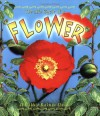 The Life Cycle of a Flower - Molly Aloian, Bobbie Kalman