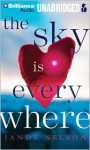 The Sky Is Everywhere - Jandy Nelson, Julia Whelan