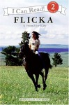 Flicka: A Friend for Katy - Jennifer Frantz, Mary O'Hara, Mark Rosenthal, Lawrence Konner, Catherine Hapka