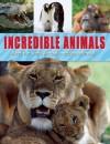 Incredible Animals - Sally Morgan