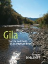 Gila: The Life and Death of an American River - Gregory McNamee