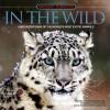 Spotlight Interactive: In the Wild - Jinny Johnson