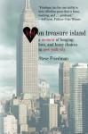 Lost On Treasure Island - Steve Friedman