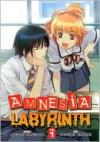 Amnesia Labyrinth, Vol. 1 - Natsumi Kohane, Nagaru Tanigawa