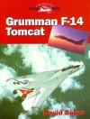 Grumman F 14 Tomcat (Crowood Aviation) - David Baker