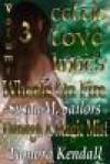 Celtic Love Knots Volume 3 - Susan Sailors, Tambra Nicole Kendall