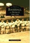 Baseball in Detroit, Michigan - David Lee Poremba