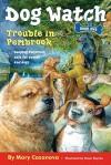 Trouble in Pembrook - Mary Casanova