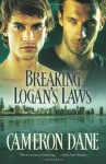 Breaking Logan's Laws (Quinn Security) - Cameron Dane