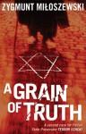 A grain of truth - Zygmunt Miłoszewski