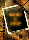 Snapshot to Destiny - Christie A.C. Gucker