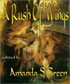 A Rush of Wings - Sarah A. Hoyt, Robert A. Hoyt, Taylor M. Lunsford, Kate Paulk, Chris Kelsey, Chris G. McMahon, Robert Cruze Jr., Dave Freer, Amanda S. Green
