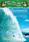 Tsunamis and Other Natural Disasters - Mary Pope Osborne, Natalie Pope Boyce, Sal Murdocca